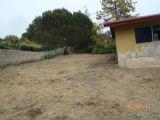 Yard 17