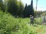Yard 9